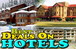 best deals on hotels in kashmir