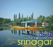 honeymoon in srinagar