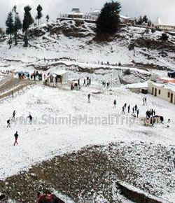 shimla manali with kashmir tour